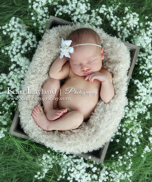 Outdoor newborn photography photographers mn