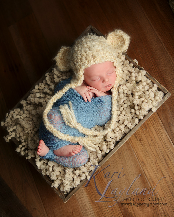 Newborn portrait photography MN