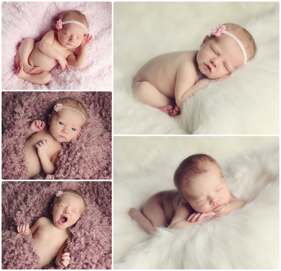 Newborn baby photography Minnesota