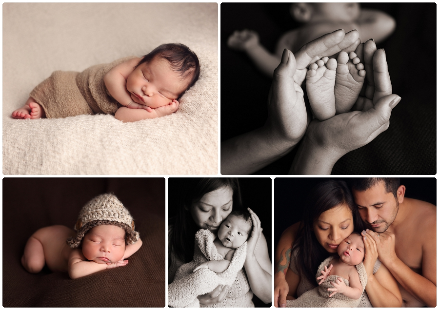 Newborn images MN