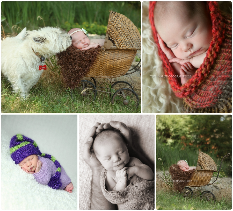 Outside newborn baby pictures Minnesota